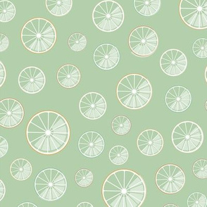 citrus slices on green