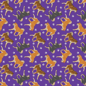 Trotting Shiba Inu and paw prints B - purple