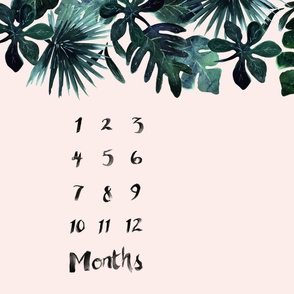 Tropical Leaves - Blush - Months - 54in