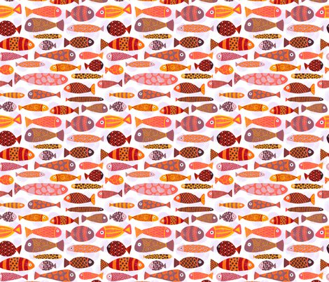 Rsandra_hutter_tropical_fishes_high_res_shop_preview