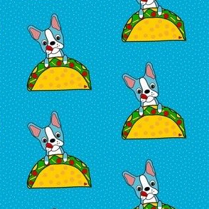Blue Bostons loves Tacos