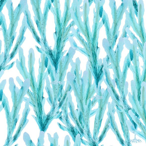 blue kelp on white