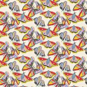 Moth Whirls-2