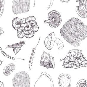 Mushrooms: Black and White