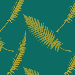 Ferns, emerald forest