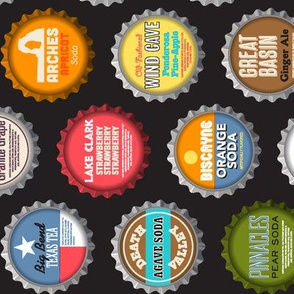 Soda Nation (2-liter Cola Custom Railroaded) || bottlecap bottle cap national park America United States nps polka dots typography cola travel summer food drink vacation