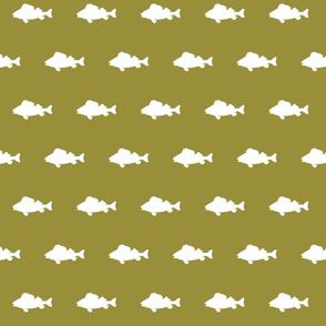 fish run on - dont wake the bear green