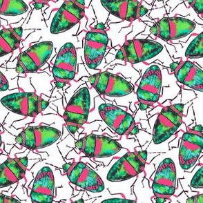 Emerald-Pink Bugs bunch