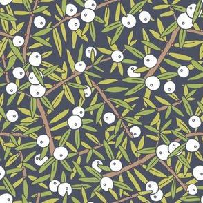 Juniper Berry - Green