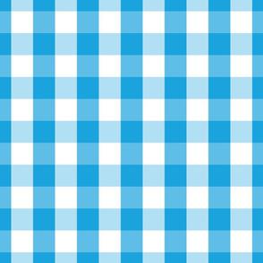 Oktoberfest Bavarian Blue and White Large Gingham Check