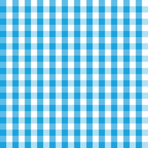 Oktoberfest Bavarian Blue and White Gingham Check
