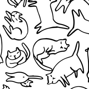 sketchy funny cats pattern