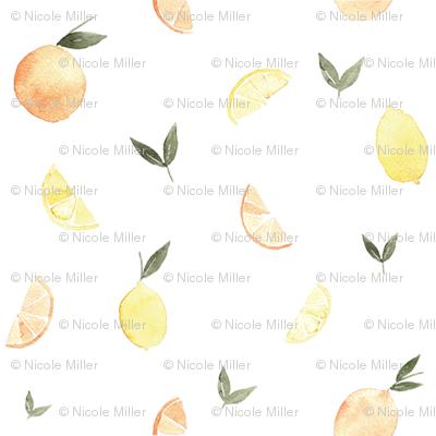Citrus & Leaves