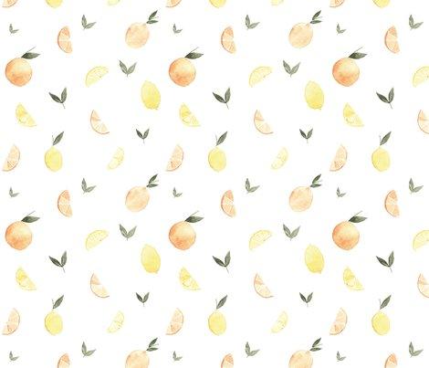 Citrus_newone_shop_preview