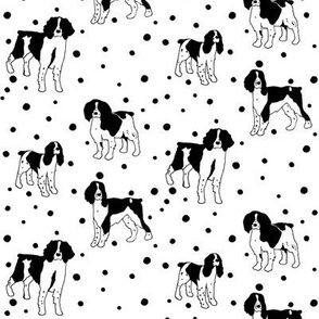 English Springer Spaniel Sketch