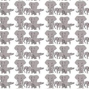 Grey African Elephants on White