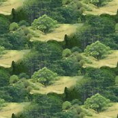 Rrrforest_diversity_forest_collage_crop__seamlessb3a_shop_thumb
