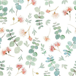 Eucalyptus scatter - mint and coral