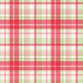 Pink and green watermelon retro plaid