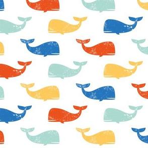 multi whales
