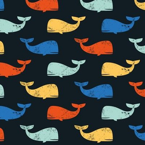 multi whales on dark blue