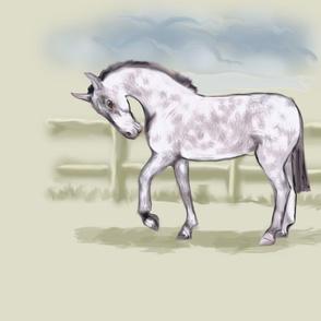 Dapple Gray Horse for Pillow
