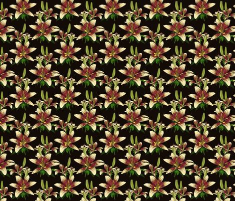 Dragon Lily on black 4x4 fabric by leroyj on Spoonflower - custom fabric