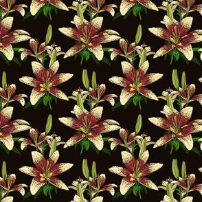 Dragon Lily on black 8x8