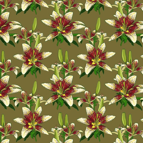 Dragon Lily on olive 8x8