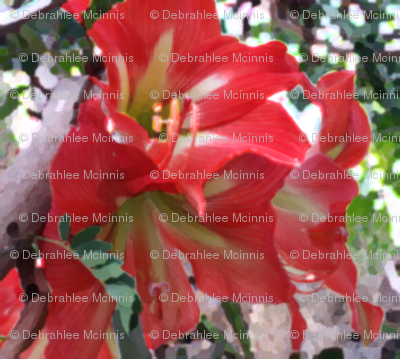 Guat-flower_preview