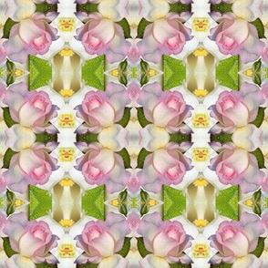 roses upside down