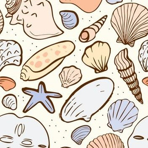 Shoreline Seashells