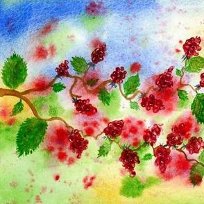 Raspberry Brambles