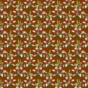 Dragon Lily on brown 4x4