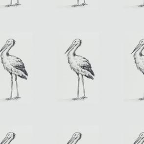 stork pattern