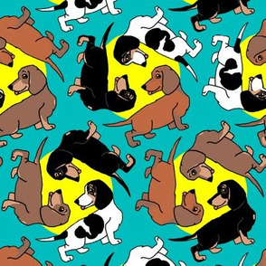 1950s Style Assorted Dachshund Puppies on Blue and Yellow