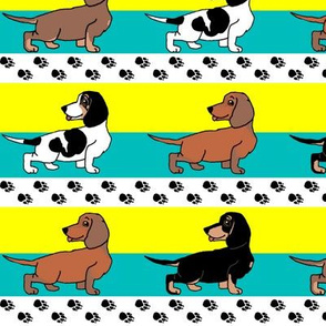 1950s Style Assorted Dachshund Puppies on Blue and Yellow Stripe