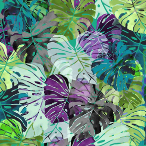 Emerald Shades of Monstera leaves