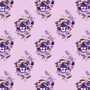 Pansy Dark Blue Plum Lilac