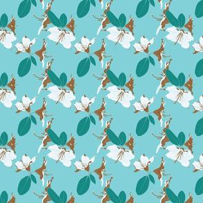 Aqua florals