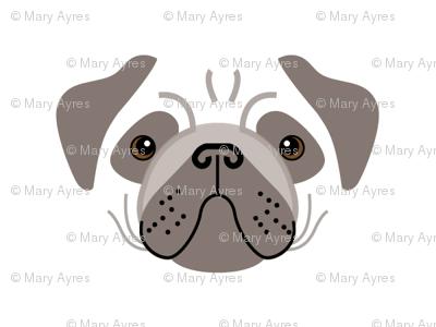 pug-dark brown-and-white