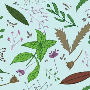 Emerald Botanicals