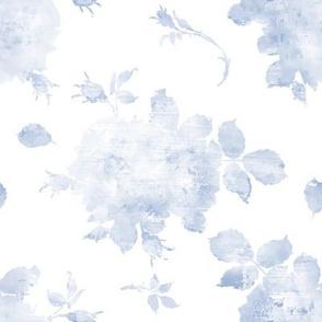Springlake Roses blueberry