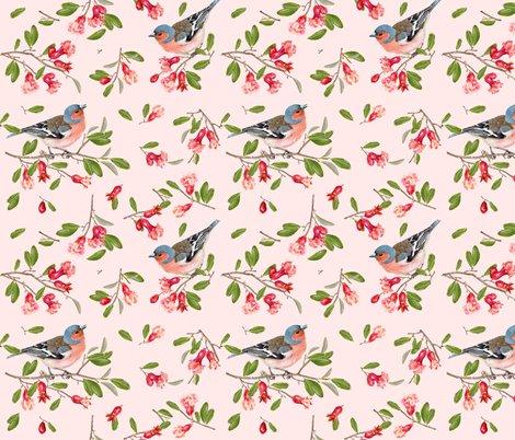 Pomegranate_bird_pattern___________________shop_preview