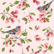Pomegranate_bird_pattern___________________shop_thumb