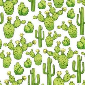 Cinco de Mayo Saguaro Cactus