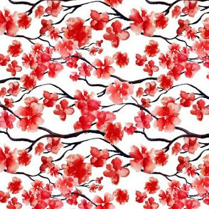 Japanese Red Cherry Blossom, Sakura tree watercolor on white background