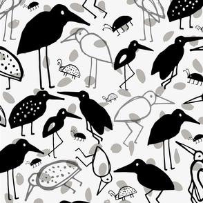 Ada Birds