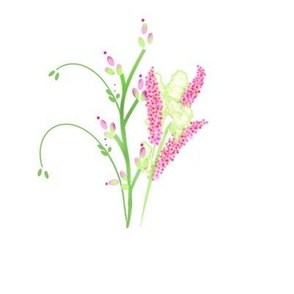 Bouquet Heather Single_edited-1