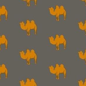 Orange camel on warm gray